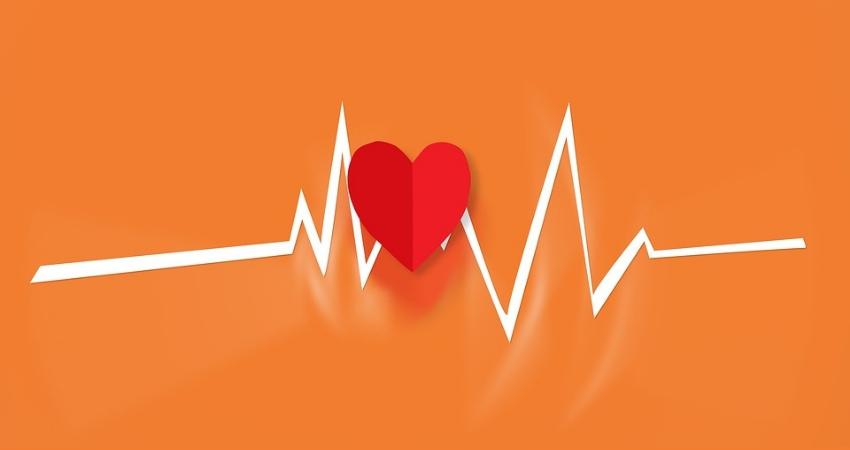 Tiroide, cuore, tachicardia: sono collegati ?
